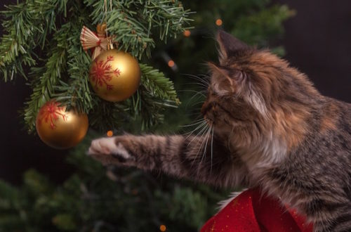 Cat batting Christmas tree ornament